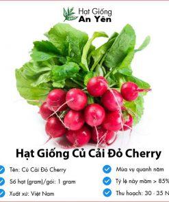 Hat-giong-cu-cai-do-cherry-07