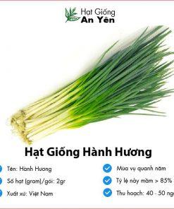 Hat-giong-hanh-huong-01