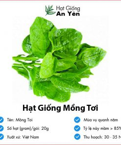 Hat-giong-mong-toi-07