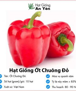 Hat-giong-ot-chuong-do-01