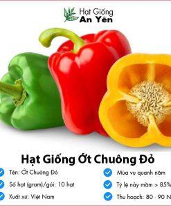 Hat-giong-ot-chuong-do-02